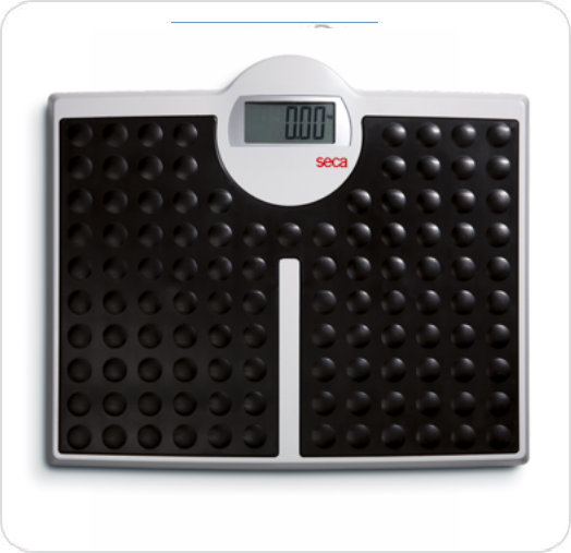 Scale Floor Digital 813 High Capacity