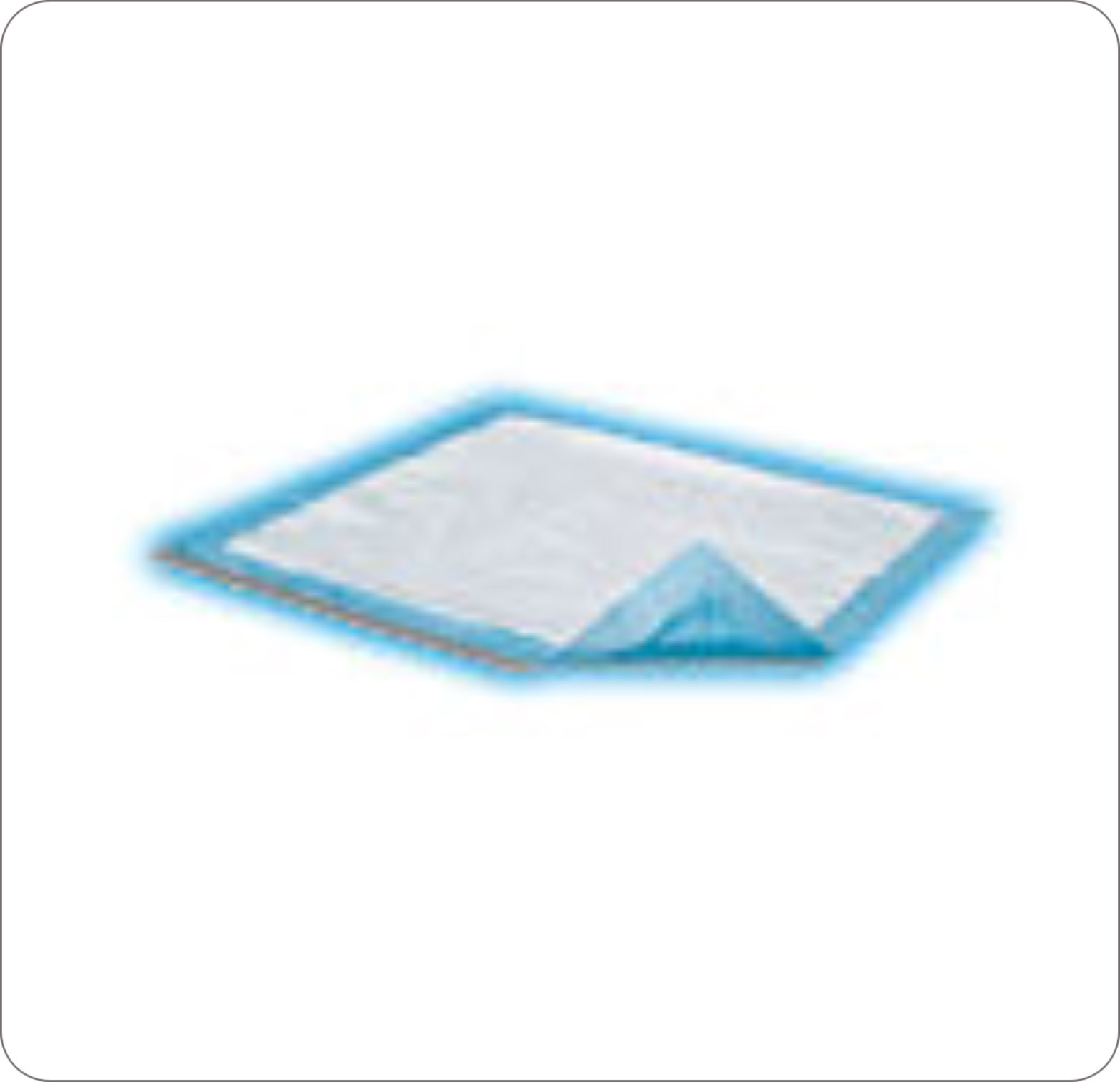 "Underpad Disp 17X24"" Dri-Sorb Light Abs Blue"