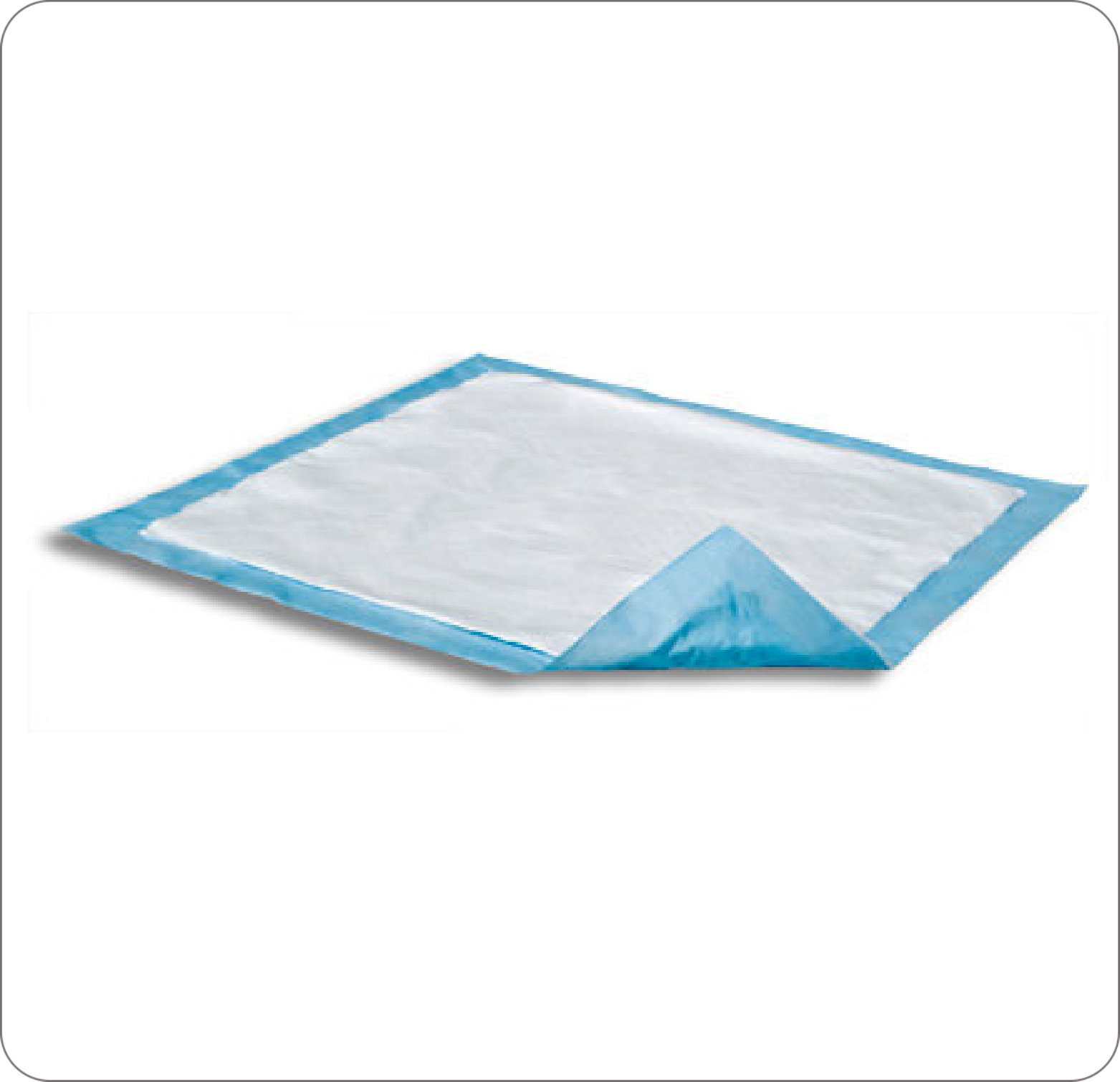 "Dri-Sorb Disposable Underpad 17""X24"" Package Of 10"