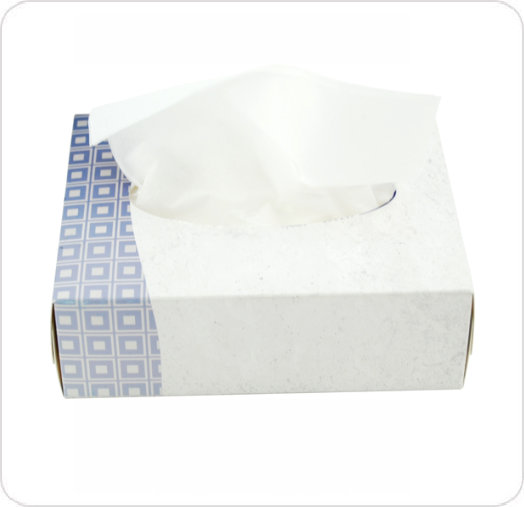 Tissue Facial 19 X 12.7Cm 2-Ply Flat Box