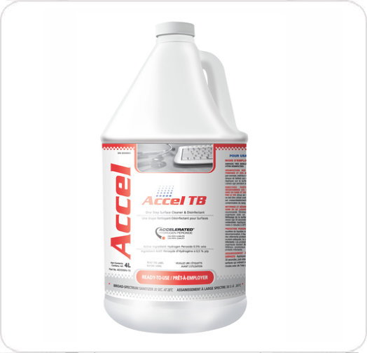 Disinfectant Accel TB 100906727