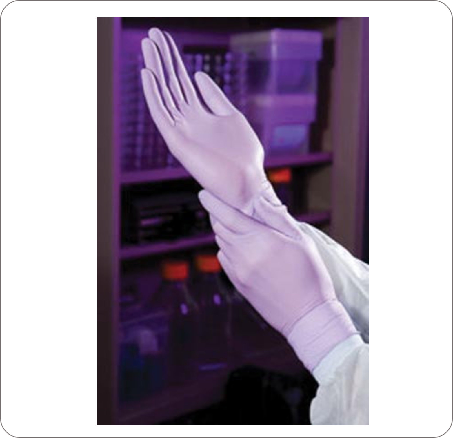 Glove Nitrile Halyard Lavender Powderfree